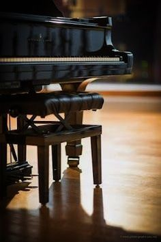 Piano Bench, Piano Room, Sound Of Music, My Music, Piano Photography, Piano Man, Piano Girl, Baby Grand Pianos, Omega