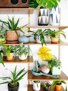 Mach Dein Zuhause grün, hol Dir den Sommer in die Wohnung!