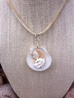 Very Pretty Sanibel Island shell necklace by SeashoreFinds on Etsy, $20.00