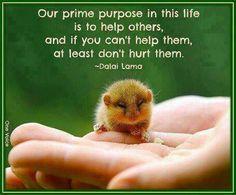 #quote #dalailama