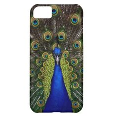 Peacock iPhone 5 Case Girls Pretty Elegant Case