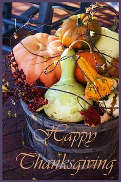 HAPPY THANKSGIVING, right around the corner! Can't wait for turkey and pumpkin pie :)