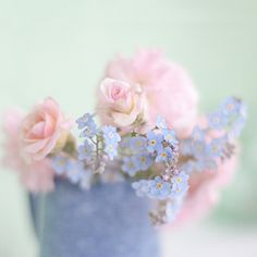 Roses and Forget-Me-Nots by Jill Ferry  #photography #flowers #pastel