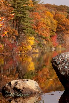 Resources for planning fall foliage trips Pt1 - New England fall foliage