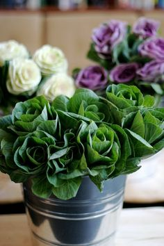 I Love these Brassica Cabbage Flowers and all the different ways to use them!
