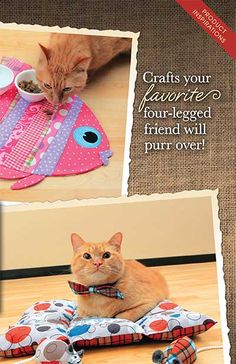 Crafts your favorite four-legged friend will purr over! We've got your kitty covered with an adorable selection of pet-friendly projects.
