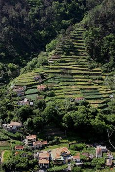 Madeira, Portugal someday maybe. This is where my family is from.