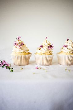 ... blondie cupcakes with miso buttercream ...