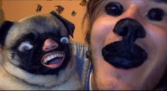This pug and her owner | 30 Most Disturbing Face Swaps Of 2012