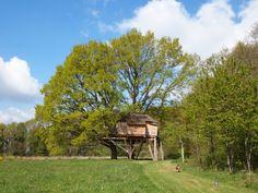 La cabane sous le printemps