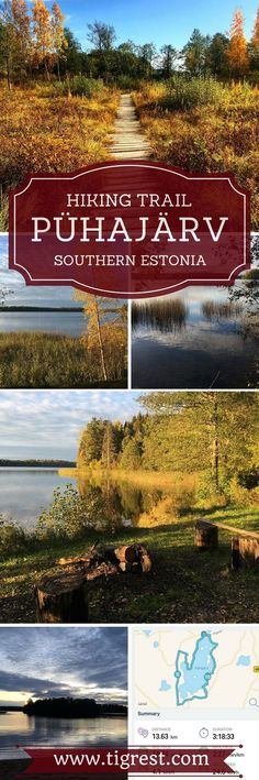 Lake Pühajärv hiking trail - amazing trail in southern Estonia for a cool day hike, how to get there, where to stay overnight and much more