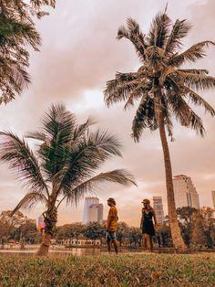 Lumphini Park Bangkok | Thailand Travel | Explore Thailand | Thailand Travel Guide | Women who explore | Travel Photography | Pink Aesthetic | Asia Travel Thailand Travel Guide, Bangkok Thailand, Asia Travel, Explore Travel, Pink Aesthetic, Palm Trees, Dolores Park, Travel Photography, To Go