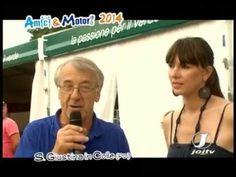 AMICI & MOTORI 2014 SANTA GIUSTINA IN COLLE ( PD )
