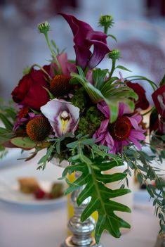 Fresh burgundy flora