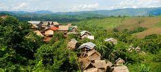 The Nam Ha National Park in Luang Namtha, Laos