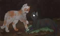 {Eevee Lover / Amberheart Or Amberclaw}: FallenxHolly my #3 favorite ship in the Warrior Cats series!