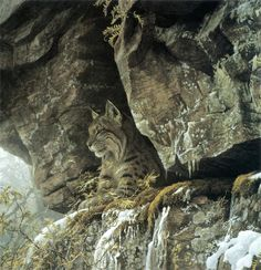 Artodyssey: Robert Bateman She has a likeness, survey her kingdom! Notice the snowy surroundings.
