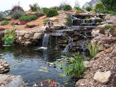 """RMSer watergardengirl says it took a year to build this series of waterfalls and 30' x 18' pond next to their deck. """"We hauled 60 tons of rock from 150 miles away,"""" she says."""
