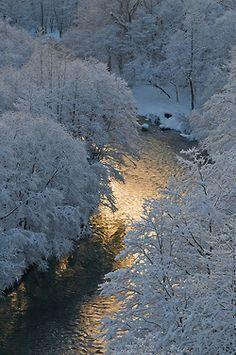 Zimo, učiň mě tichým abych slyšel bolest v uzavřených stromech v němých ptácích ve vodě škrábající tenkými dětskými nehýtky pod příkrovem ledu. Zimo, učiň mě tichým abych slyšel tvou bolest.( Jan Burian - Zimní modlitba)