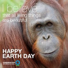 Happy to share this beautiful Earth Day graphic by our partner Conservation International! Appreciate the beautiful world you live in. #faceofclimate #EarthDay2013  http://art-of-conservation.org/news-media/art-gorillas-blog/