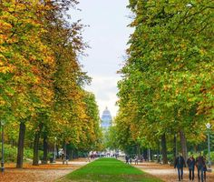 Colors of autumn in the park of Brussels by @talk_travel_to_me