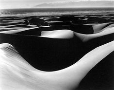 © Edward Weston - 'Dunes, Océan' (1936)