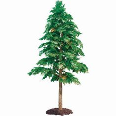 Shop for Outdoor Artificial Tall Cedar Tree with Natural Trunk : Multiple Sizes at Artificial Plants and Trees Corner Flower Bed, Flower Beds, Artificial Plants And Trees, Cedar Trees, Outdoor Plants, Topiary, Palm Trees, House Plants, Dandelion