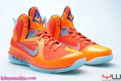 20e78e1730bb 57 Best LeBron   D Wade Shoes images