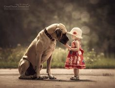 Photo by Andy Seliverstoff  A photographer is launching a new book featuring 100 touching images showing the loving bond between young children and their enormous dogs. The series of pictures shows breeds such as Great Danes and Newfoundlands towering over toddlers - highlighting their mutual love