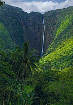 "Lono, God of Rain and Agriculture. Waipio Valley, The Big Island. In an effort to capture Lono, Peter descends a treacherous unpaved path down into the Waipio Valley. Located on the Hamakua Coast the Waipio Valley or ""Valley of the Kings"" is considered sacred ground. It is believed that 50 generations of Hawaiians have lived and died in the valley and many believe these ancient Hawaiians have left behind supernatural power that can be felt to this day. Surrounded on three sides by 2,000 foot…"