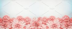 Pastel pink flowers banner or border by VICUSCHKA on @creativemarket