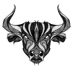 Go Bulls