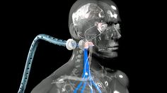Beyond human: How I became a cyborg. Why enhancing the senses raises surprising personal and ethical problems.
