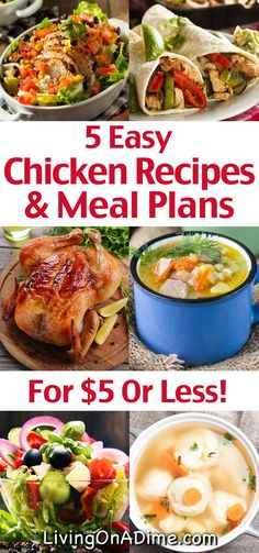 Here are 5 easy chicken recipes and meal plans you can make for your family for $5 or less! They're quick and easy, so you'll get out of the kitchen fast and they'll make it easier to save on your food bill!