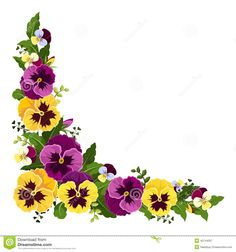 flowers drawing pictures - Google zoeken