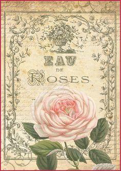 Ryžový papier A4, Eau de roses