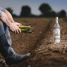 First London dry gin with asparagus to launch