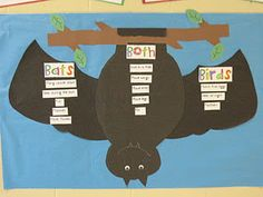 Bats/ Birds Venn Diagram The Great Ball Game-reading story