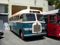 Bedford Bus from the Omnibus Society Bedford Buses, Horse Box Conversion, Bus Remodel, Service Bus, Tin Can Tourist, Automobile, New Zealand Houses, Van Home, Portable House