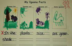 Animal Facts sheet(s)