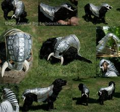 Fantasy Dog Knight Armor Aluminum suit by Lebovskiart! This hand made product is… Big Dogs, I Love Dogs, Bandits Costume, Dog Armor, Black Cocker Spaniel, Knights Helmet, Knight Armor, Crazy Outfits, Suit Of Armor
