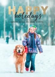 Happy Holidays - Holiday Cards - Christmas Cards