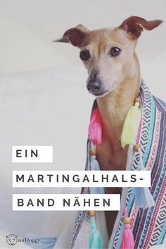 Windhunde brauchen eine besondere Art von Halsbändern. Hier erfährst du, wie du solch ein Martingalhalsband selber nähen kannst.