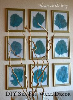Sea Fan Wall at the Beach ~ House on the Way