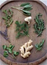 Medicinal Herbs - The medicinal applications of herbal supplements