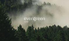 Evergreen Free Display Typeface