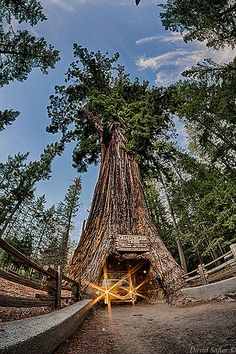 Only three drive-thru trees remain in California, all on the Redwood Coast