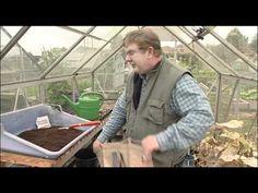 How To Grow Potatoes In Potato Planter Bags