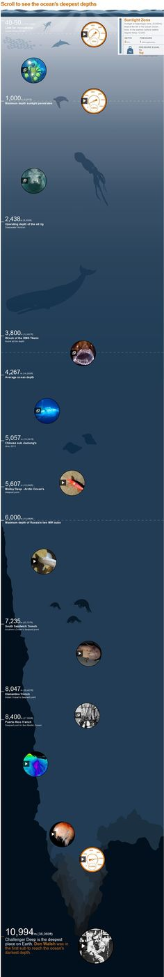 trench: Take a dive down Ocean trench: Take a dive down. Scroll to see the ocean's deepest depths -Ocean trench: Take a dive down. Scroll to see the ocean's deepest depths - Earth Science, Life Science, Science And Nature, Ocean Depth, Ocean Unit, Interactive Infographic, Marine Biology, Biomes, Environmental Science