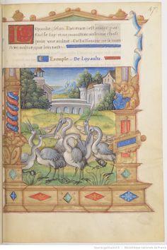 « Le Livre nommé Fleur de vertu, translaté d'italien en françoys, par FRANÇOYS DE ROHAN, archevesque de Lion, primat de France et evesque d'Angiers ».